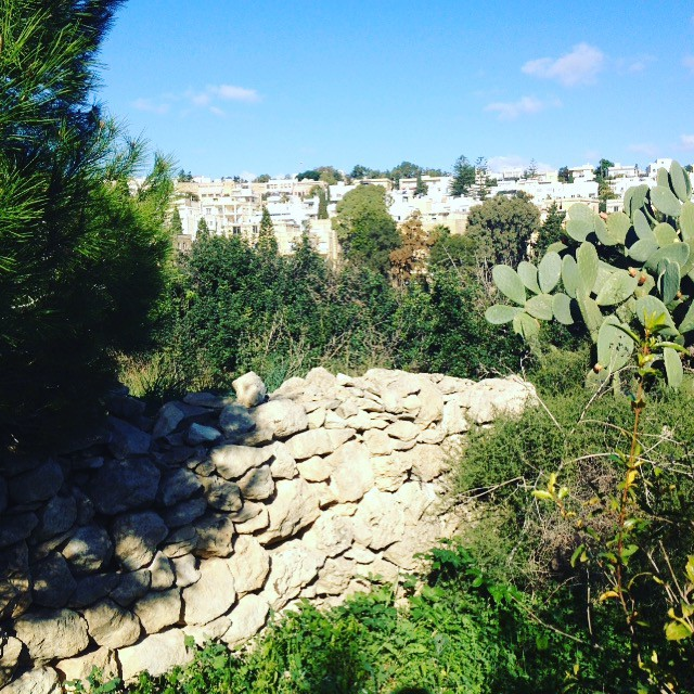 Maltese Countryside with rubble wall